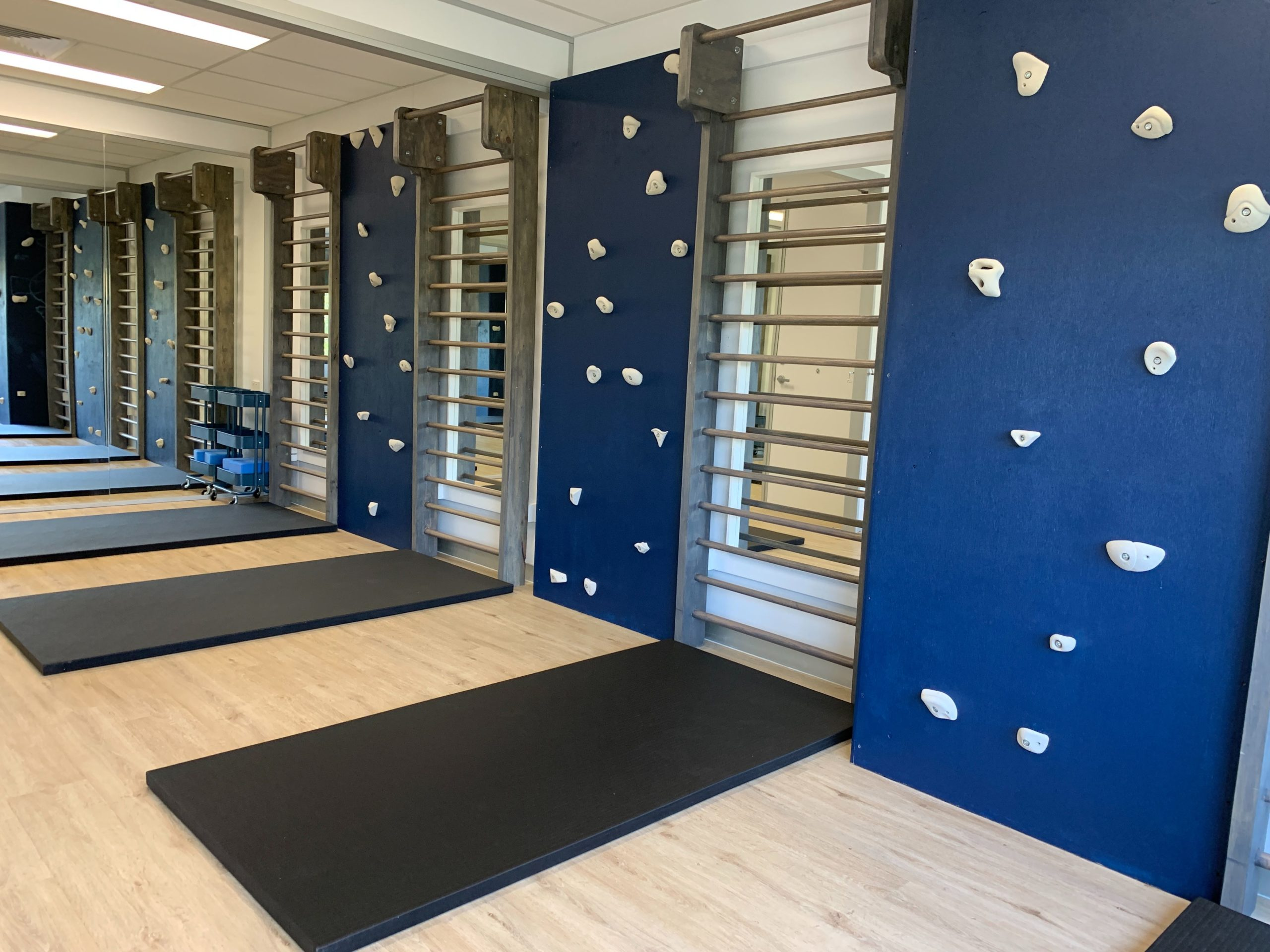 The Scoliosis Collective gym space with rockclimbing walls and stall bars
